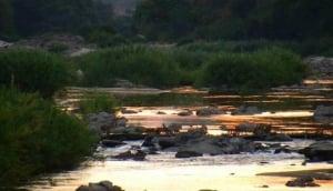 Kaza Safaris