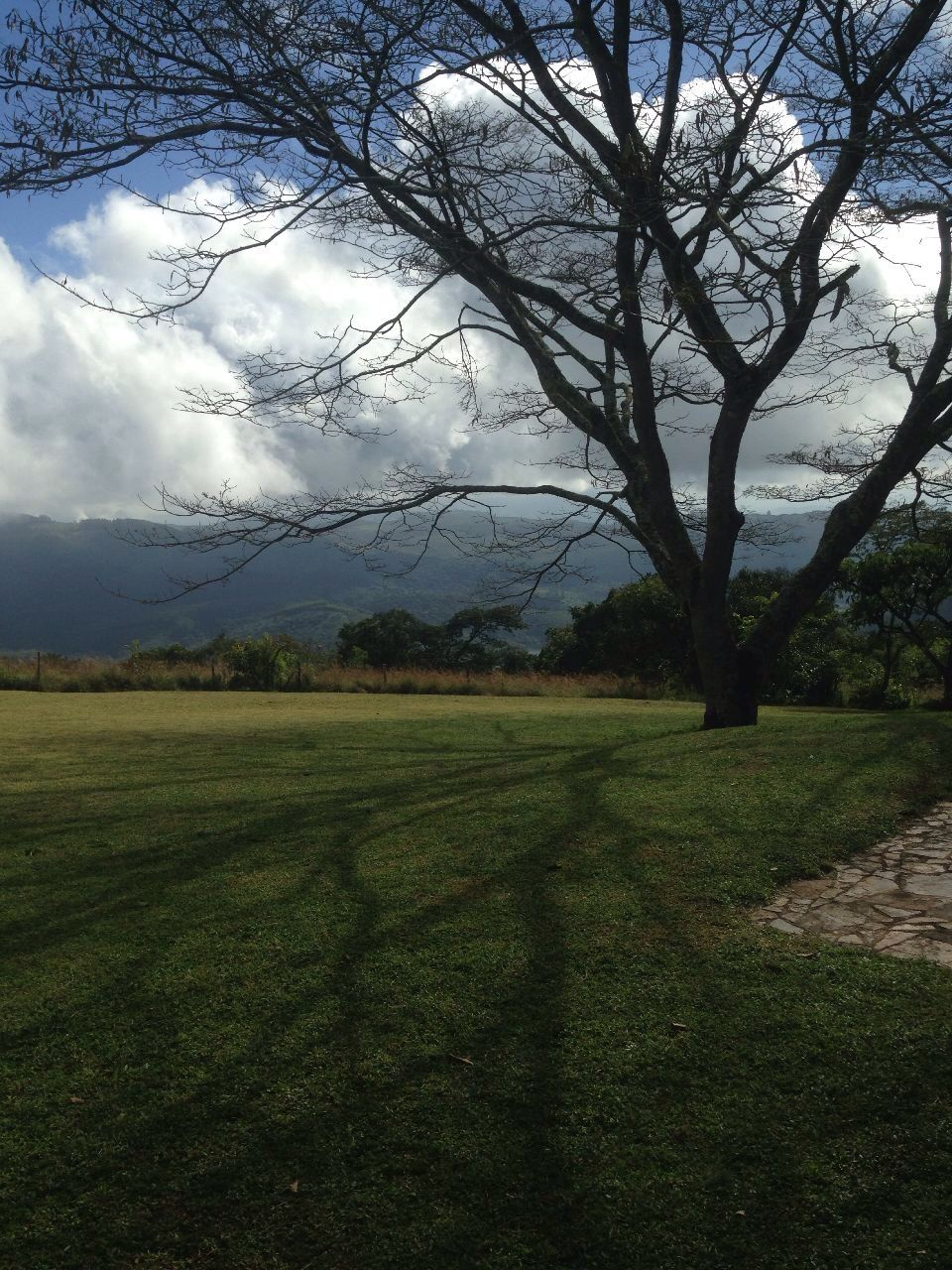 Hivu - Monagera Cottage Bvumba