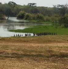 Sebakwe Recreational Park and Lodges