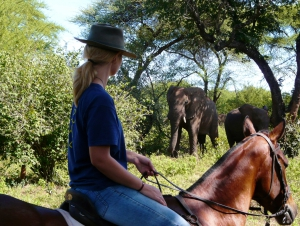 Wild Horizons Horse Riding Safaris