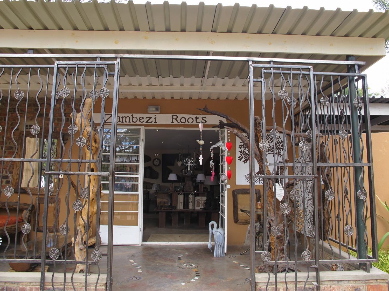 Zambezi Roots
