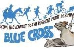 Blue Cross 2016