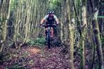 Far And Wide - Wild Ride 2016