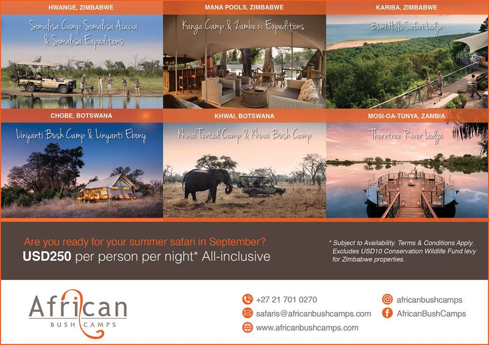 African Bush Camps Amazing SADC Specials in September!
