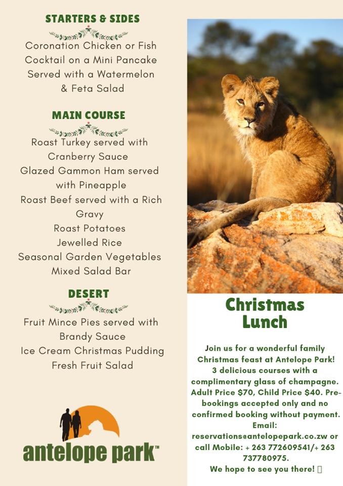 Antelope Park Christmas 2018