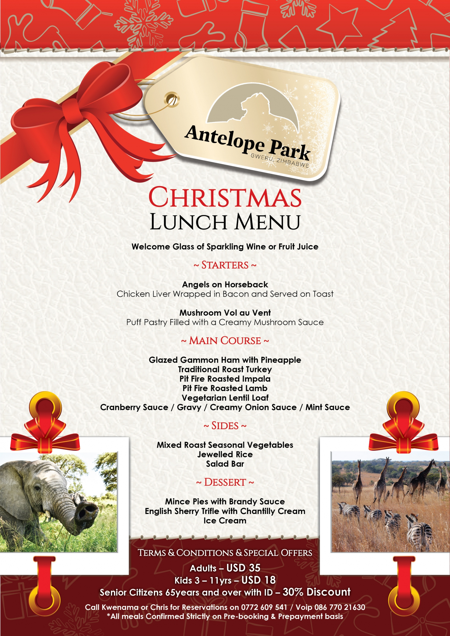Antelope Park Christmas Packages and Lunch