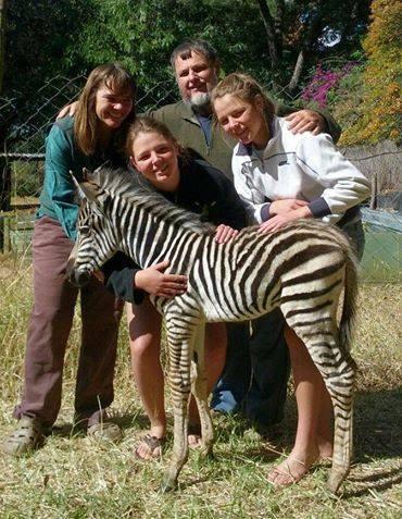Bally Vaughan Animal Sanctuary - Mwanga Lodge