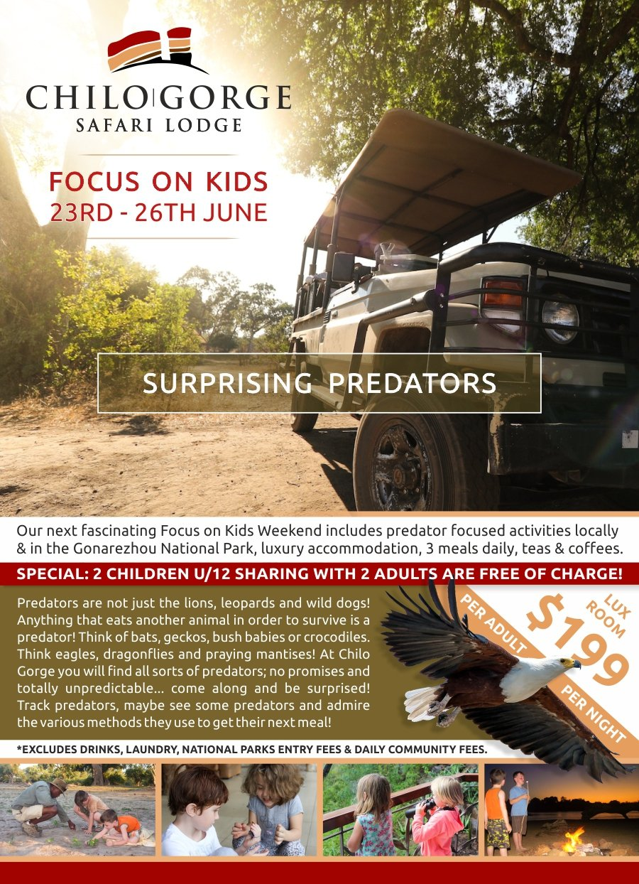 Chilo Gorge Focus on Kids : Surprising Predators