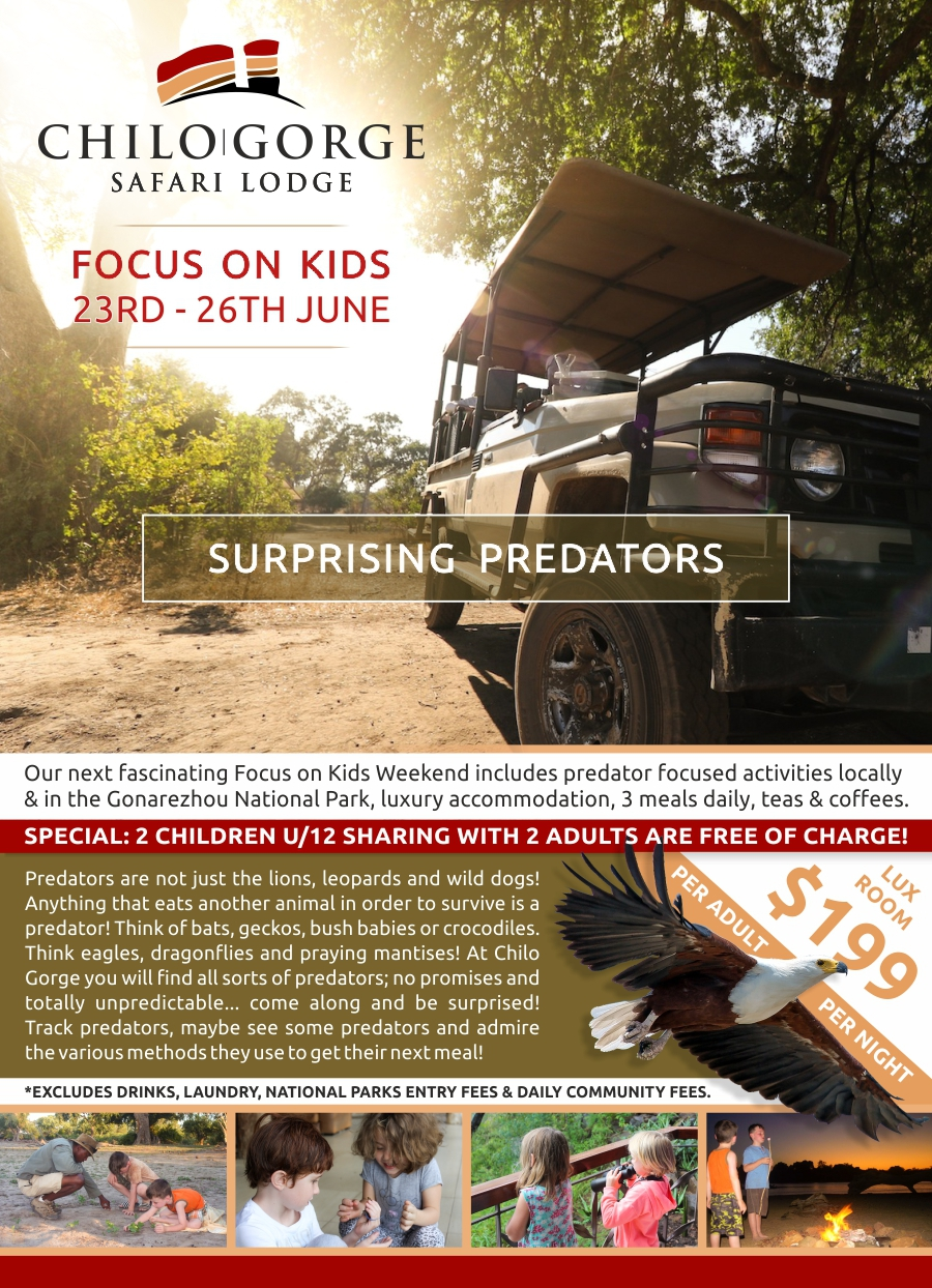 Chilo Gorge Focus on Kids : Surprising Predators