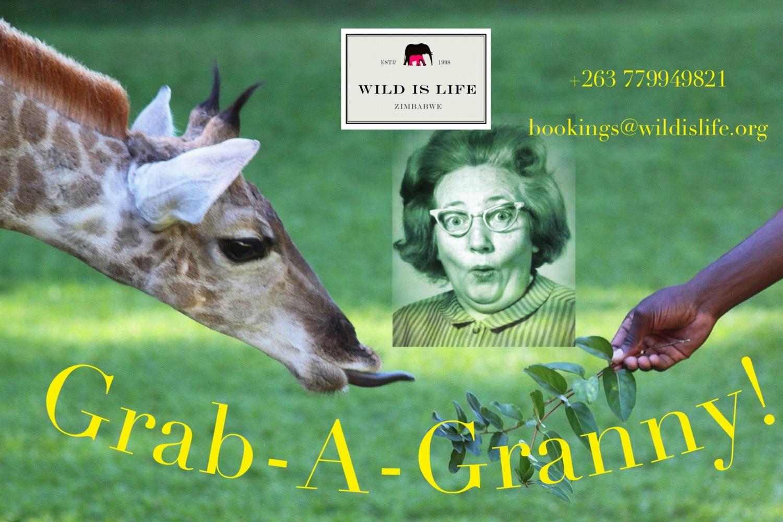 Grab - A- Granny Special