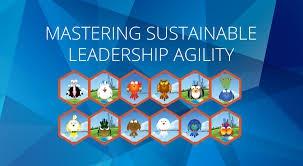 Mastering Sustainable Leadership Agility Seminar