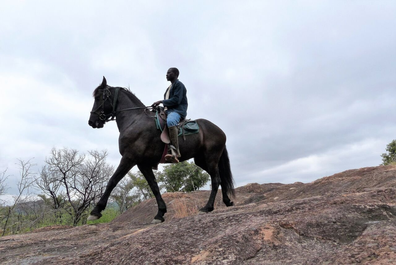 Ride Zimbabwe Special Offer