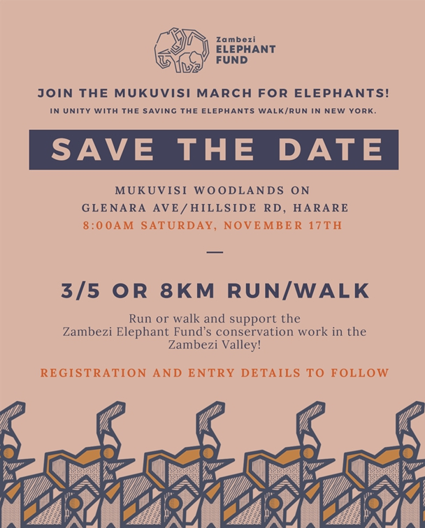 Mukuvisi March for Elephants!