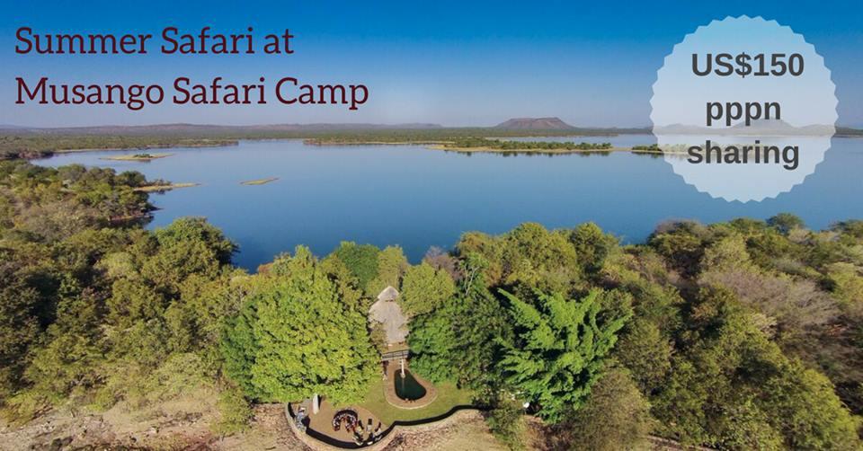 Musango Island Safari Camp Special.