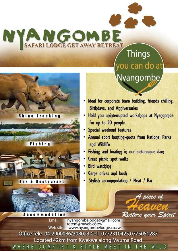 Nyangombe  Safari Special offer