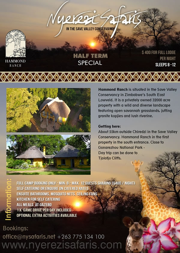Nyeredzi Safaris 2017 Half Term Special