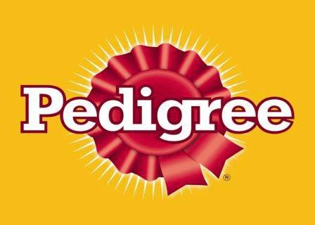 Pedigree Fun Show