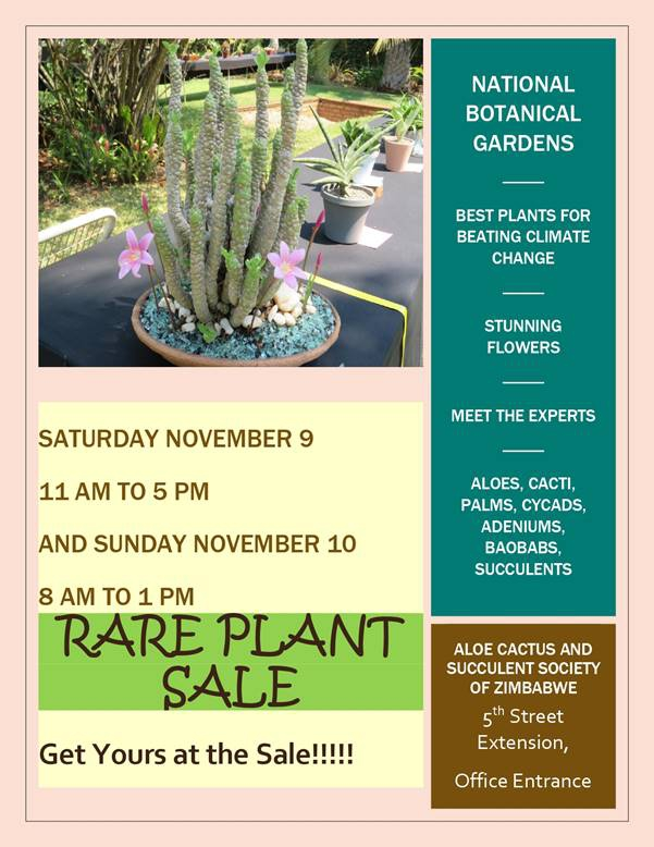 Rare Plant Sale November 2019