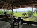 Rhino Safari Camp Low Season Special