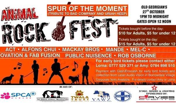 rock fest fundraising flyer my guide zimbabwe