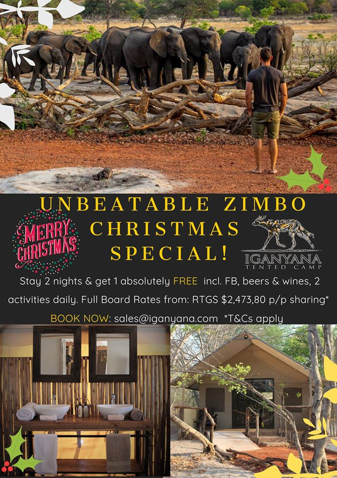 Unbeatable Zimbo Christmas Special