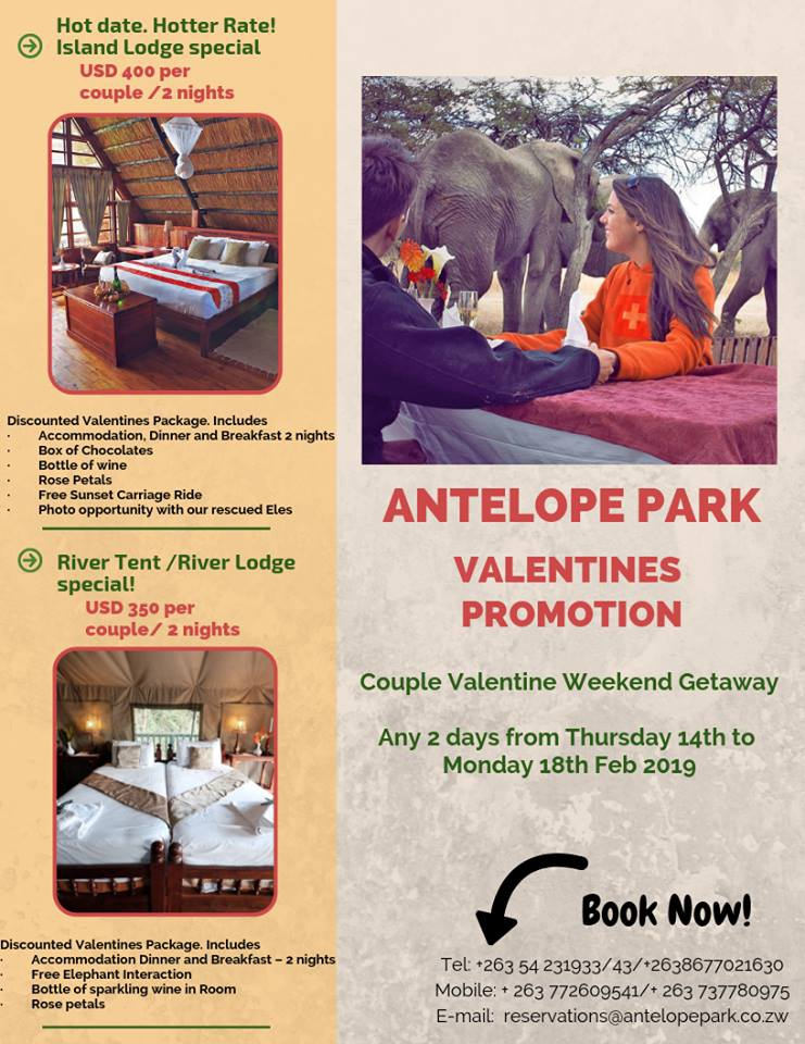 Valentine's Promotion at Antelope Park