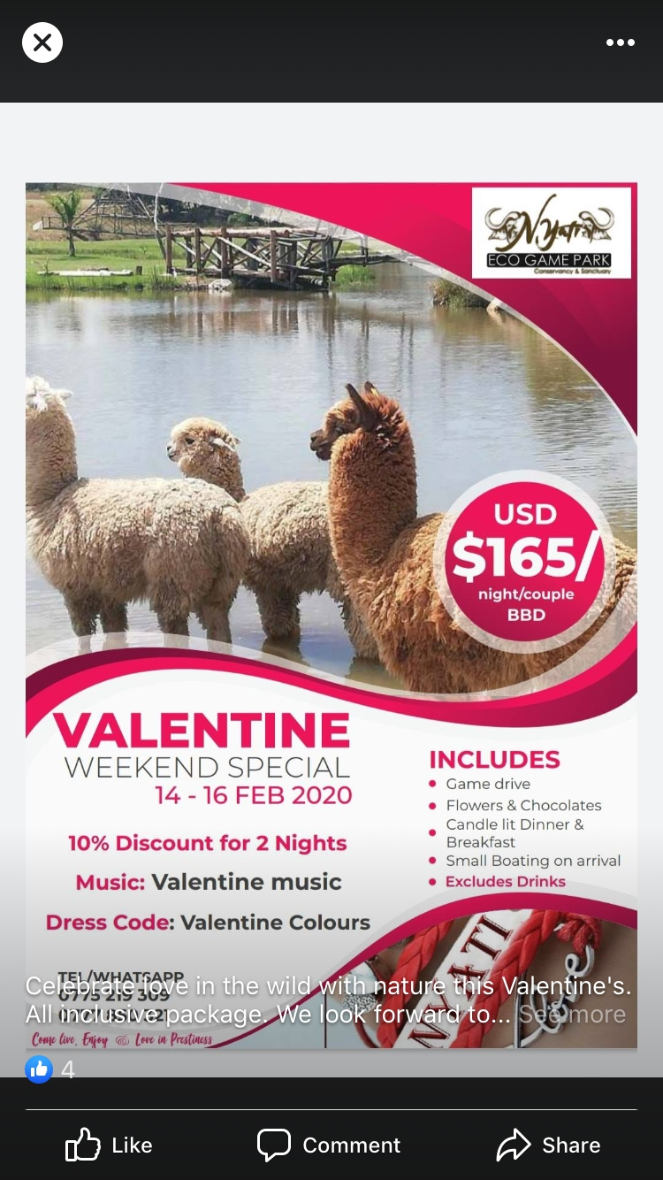 Valentine's Weekend Special At Nyati Eco Game Park