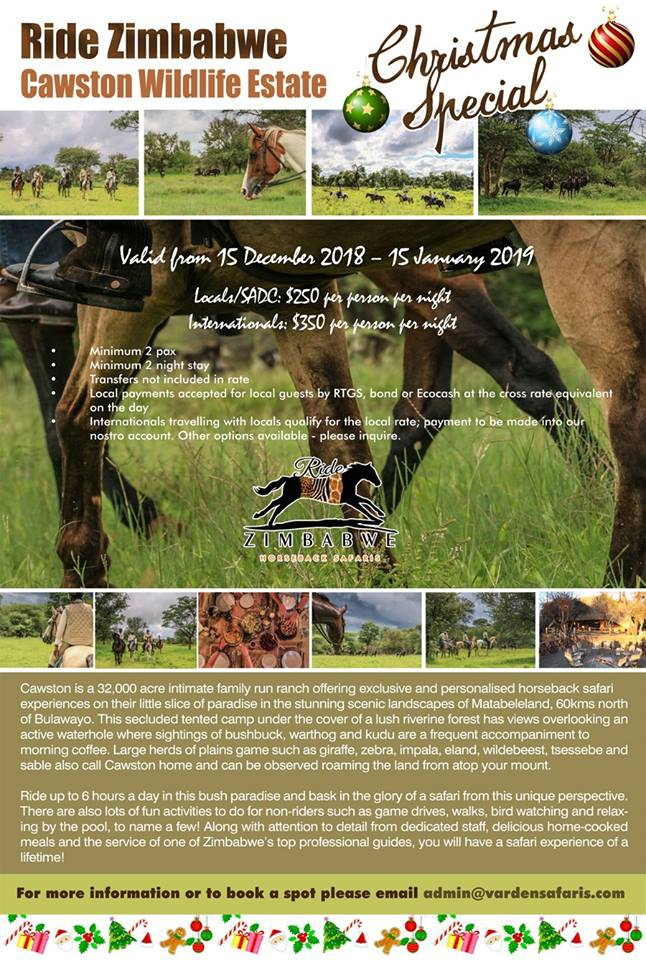 Varden Safari Christmas Special