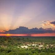 Victoria Falls Safari Lodge and Victoria Falls Safari Club Valentines Specials