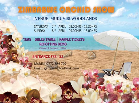 Zimbabwe Orchid Show 2018